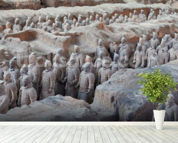 Terracotta Warriors in Xian wall mural room setting