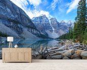 The Big Outdoors wallpaper mural living room preview