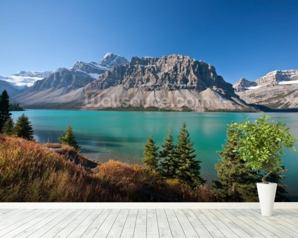 Beautiful bow lake alberta wallpaper wall mural for Beautiful wall mural
