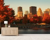 Autumn in Montreal wall mural living room preview