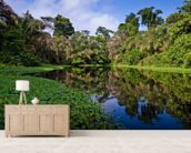 Rainforest River wall mural living room preview