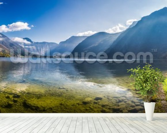 Austrian Alps Panorama mural wallpaper room setting