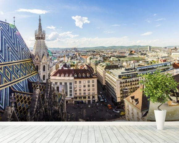 Panoramic View of Vienna wall mural room setting