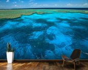 Great Barrier Reef Park wallpaper mural kitchen preview