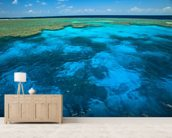 Great Barrier Reef Park wallpaper mural living room preview