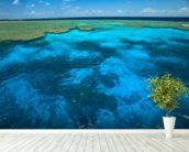 Great Barrier Reef Park wallpaper mural in-room view