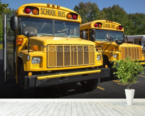 School Buses wall mural room setting