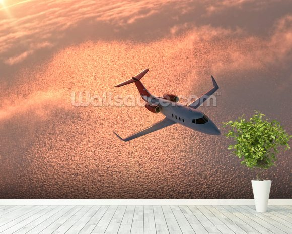 Private Jet at Sunset wall mural room setting
