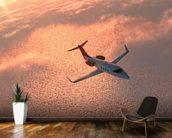 Private Jet at Sunset wall mural kitchen preview
