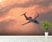 Private Jet at Sunset wall mural in-room view
