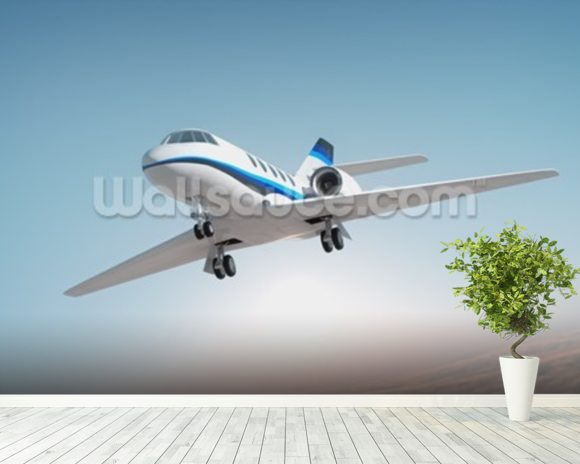 Business Jet wall mural room setting