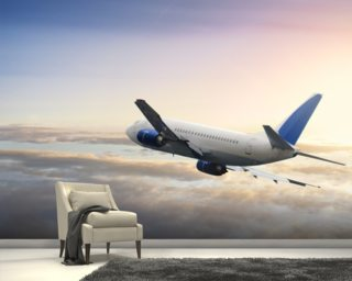 Airplane wallpaper aircraft wall murals wallsauce for Aeroplane wall mural