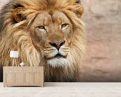 Lion Ponders wallpaper mural living room preview