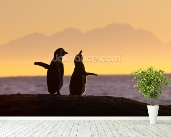 Penguin Couple at Sunset wall mural room setting