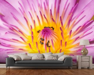 Purple Water Lilly wallpaper mural