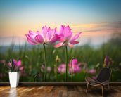 Lotus Flower in Sunset mural wallpaper kitchen preview