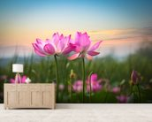 Lotus Flower in Sunset mural wallpaper living room preview