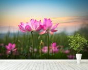 Lotus Flower in Sunset mural wallpaper in-room view