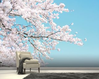 Perfect Pink Blossom Wallpaper Mural Nice Ideas