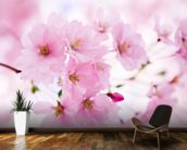 Japanese Cherry Tree in Blossom mural wallpaper kitchen preview