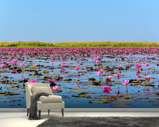 Lotus flower wallpaper wall murals wallsauce new zealand sea of pink lotus 2 mightylinksfo