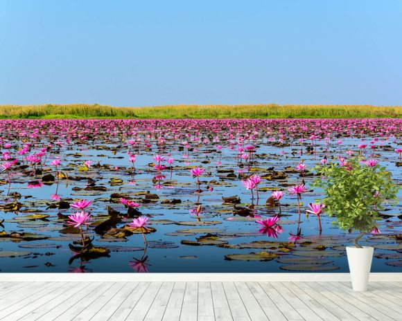 Sea of Pink Lotus 2 mural wallpaper room setting