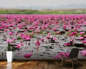 Sea of Pink Lotus, Thailand mural wallpaper kitchen preview
