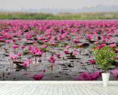 Sea of Pink Lotus, Thailand mural wallpaper in-room view