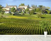 Saint Emilion, Bordeaux Vineyards wall mural in-room view
