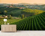 Panorama Collinare con Vigneti wall mural living room preview