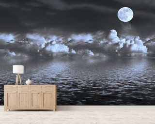 Moon Seascape wall mural