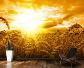 Sunset Over Wheat Field mural wallpaper kitchen preview