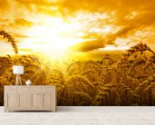 Sunset Over Wheat Field mural wallpaper living room preview