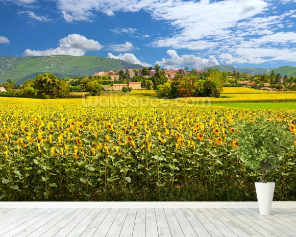Provence Sunflowers wall mural room setting