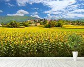 Provence Sunflowers wall mural in-room view