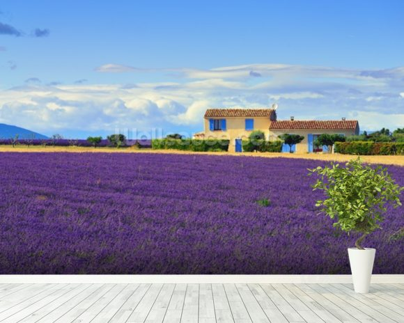 Provence Landscape wallpaper mural room setting