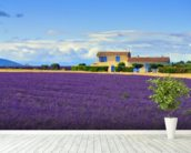 Provence Landscape wallpaper mural in-room view