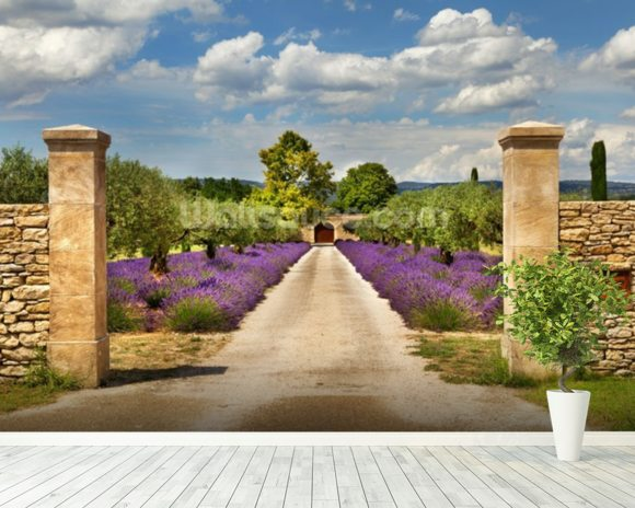 Provence - Lavender Pathway wallpaper mural room setting