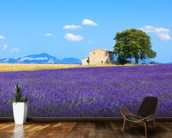 Provence - Lavender Flowers wall mural kitchen preview