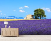 Provence - Lavender Flowers wall mural living room preview