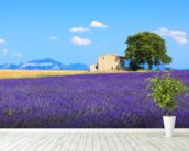 Provence - Lavender Flowers wall mural in-room view