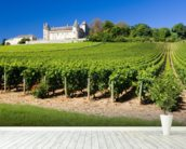Burgundy, Chateau de Rully Vineyards mural wallpaper in-room view