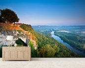Dordogne River mural wallpaper living room preview