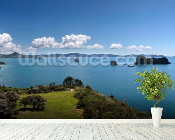 Coromandel Peninsula wall mural room setting