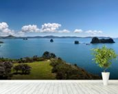 Coromandel Peninsula wall mural in-room view