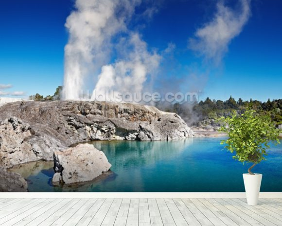 Pohutu Geyser wallpaper mural room setting