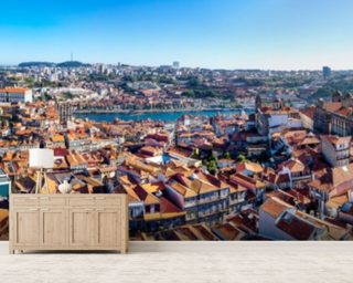 Historic Porto Skyline wall mural
