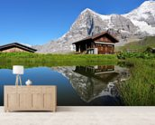 Eiger View wall mural living room preview