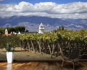 Vineyards in Cafayate wall mural kitchen preview