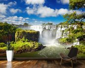 Iguassu Falls from Argentinian side mural wallpaper kitchen preview
